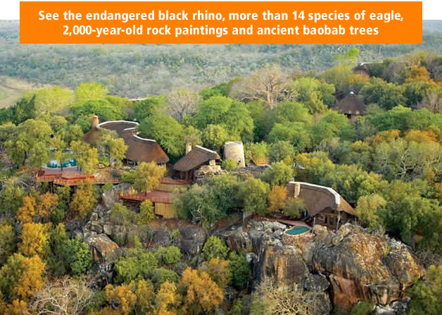 See the endangered black rhino, more than 14 species of eagle, 2,000-year-old rock paintings and ancient baobab trees