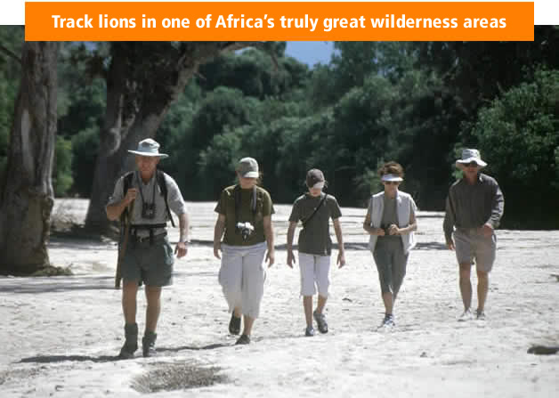 Track lions in one of Africa's truly great wilderness areas